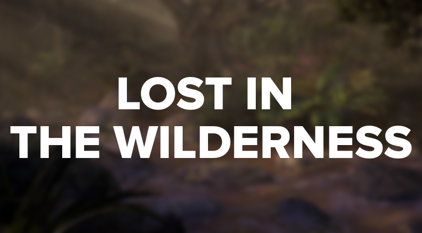 Gustav Brix Torø - Lost in the Wilderness